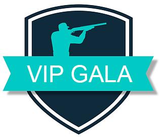 VIP Gala 2019